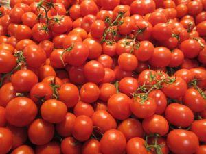 tomato kim